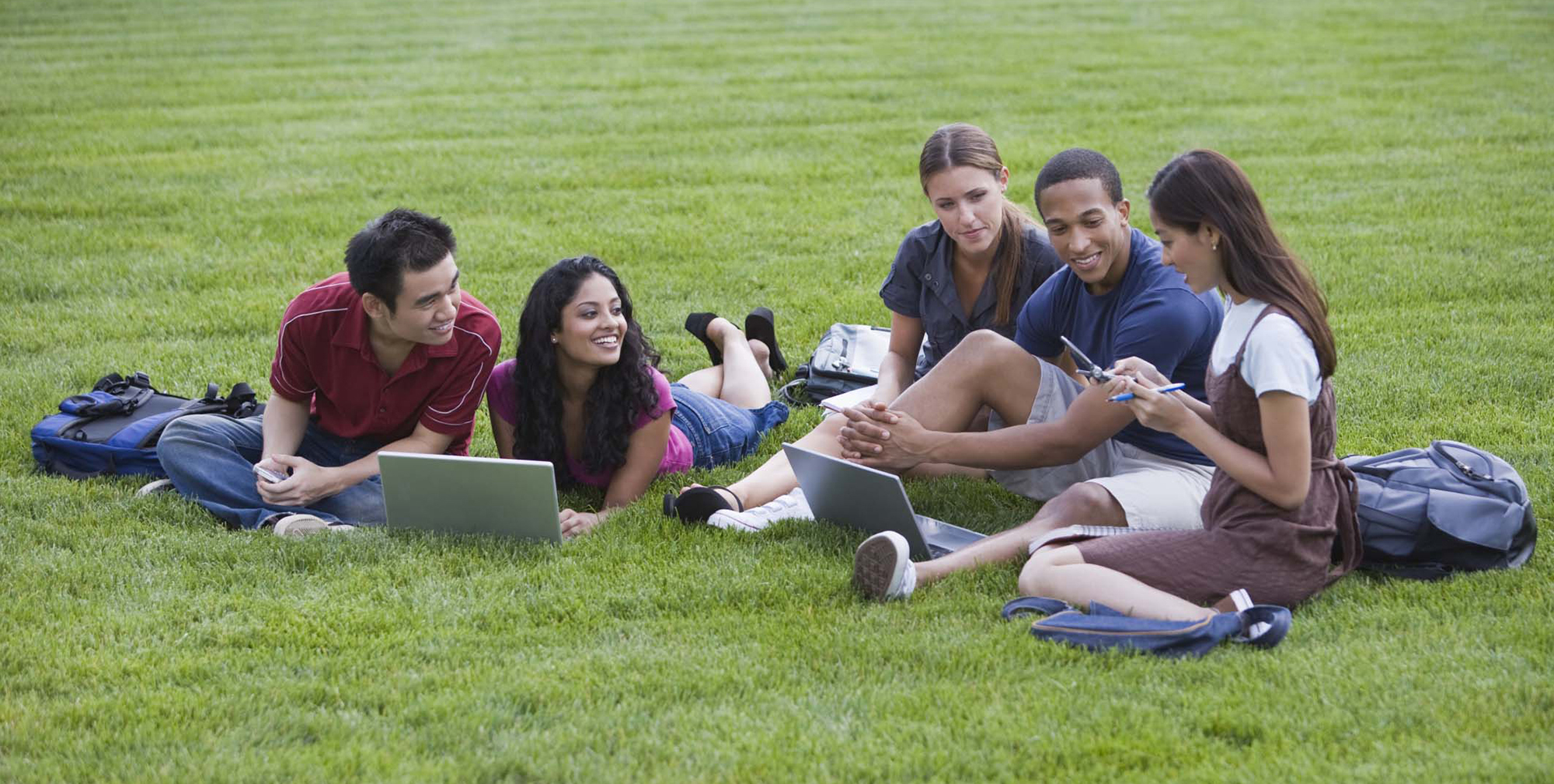 Five students studying outside on the lawn