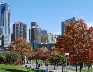 skyline of Denver from Auraria Campus
