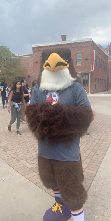 CCD Mascot Swoop in from of Tivoli Student Union in a grey shirt