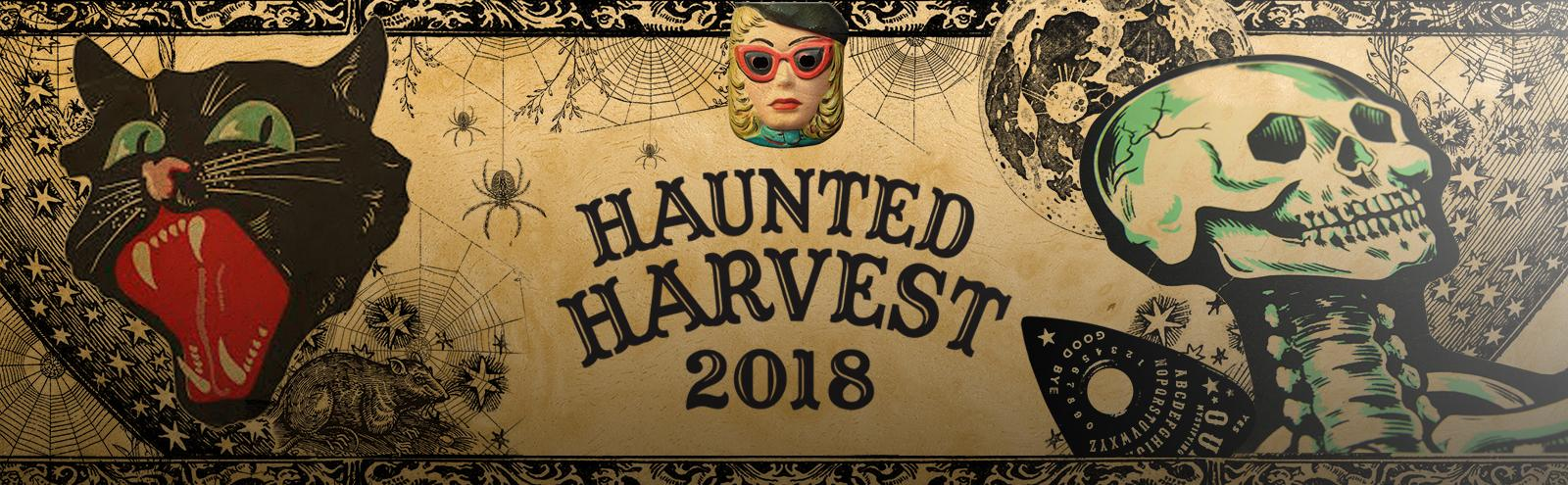 cats and skeleton graphics on Haunted Harvest poster