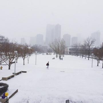 ❄️ Weather Update ❄️ CCD's Auraria Campus and Advanced Manufacturing Center (AMC) will be opening at 9 a.m. on Tuesday, February 4. As of 5:15 a.m. today, Lowry Campus will open at its regular time.