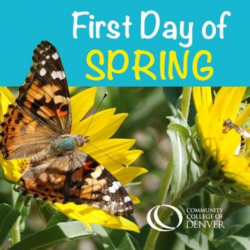 It may be hard to believe given the snow around us, but yes, today is the first day of spring. We hope you find some energy and well-being just knowing that new growth is ahead.