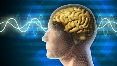 Graphic of a human head and brain with simulated brain waves